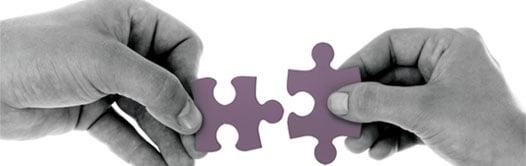 multilingual-company-partnership approach
