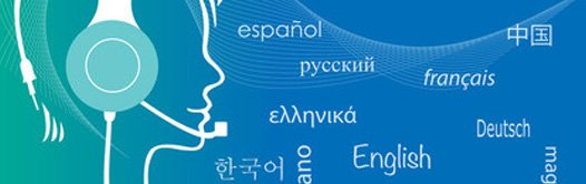 Bilingual Transcription Support